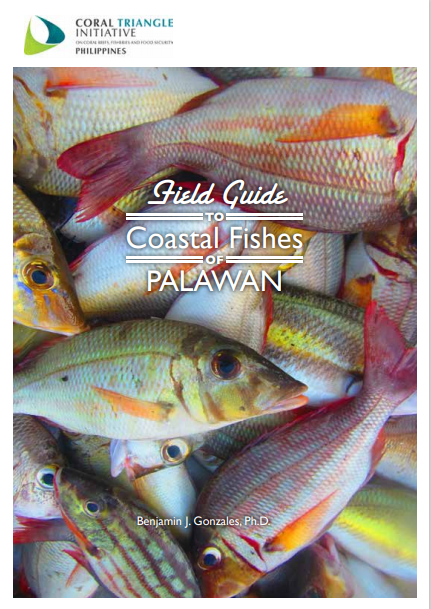 Field Guide to Coastal Fishes of Palawan